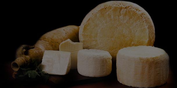 formaggi freschi sicilia